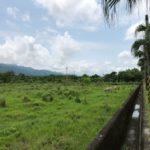 台湾 花蓮観光 – 雲山水という自然公園までレンタカーで足を伸ばす